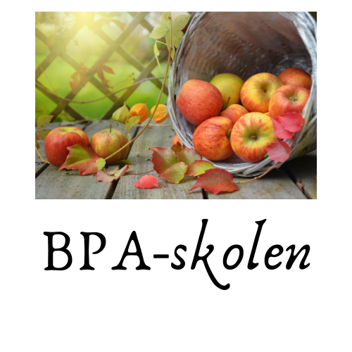 BPA-skolen